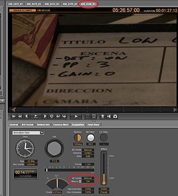 Focus is malfunctioning-untitled.jpg