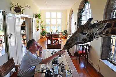 Video on Sony web site-giraffe-manor.jpg