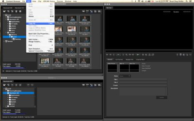 xdcam transfer-screen-cap-content-browser.tiff