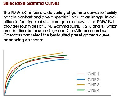 CineGama curves-cinegama.jpg