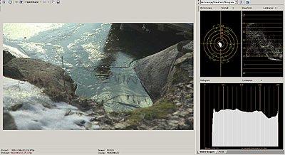 Vegas Pro 8 Workflow-8bit.jpg