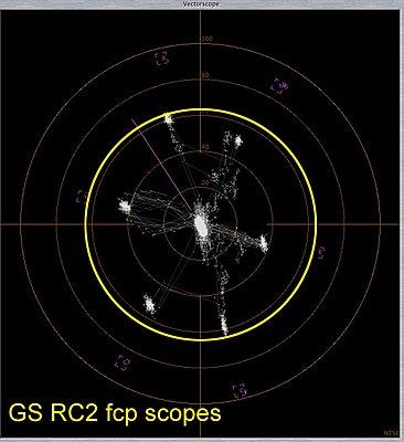 Picture Profile Recipes-gshd-rc2-fcp-scopes.jpg