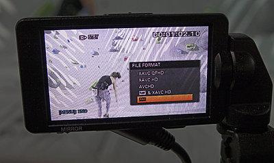 Actual Screen Shots - New FS5 RAW Firmware-dsc04920.jpg
