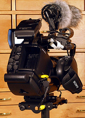 Steadicam Pilot too light, can that be helped?-ex3_3s.jpg