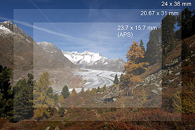 "Nikon's ""almost"" full frame camera.-test02.jpg"
