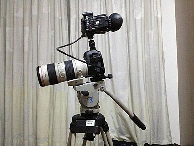 Upgrading from 501HDV: Vinten VB or Sachtler DSLR/FSB-6?-fb2.jpg