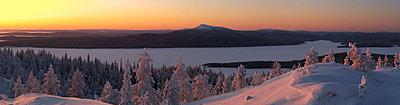 First impressions of RED One for wildlife shooting-lukkilaisvaara2.jpg