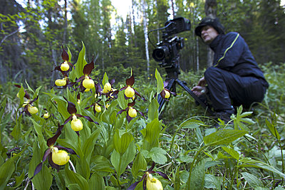 First impressions of RED One for wildlife shooting-pohjoisen-taivaan-alla-5.jpg