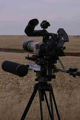 C300 long lens support-camera-2.jpg