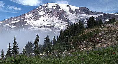 Mt Rainer-above1.jpg