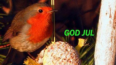 Merry Christmas Uwolers 2008-god-jul-1.jpg