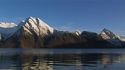 Tales of Wonder and Woe: UWOL-Long-Form 2009-mallard-fjord.jpg