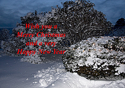 Happy hollidays 2009-_mg_4038-merry-xmas.jpg