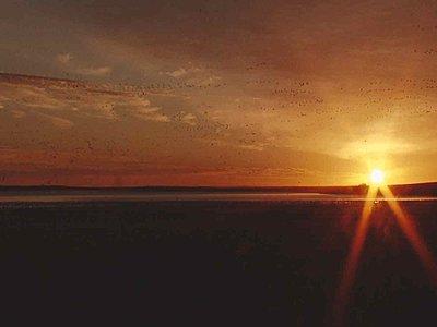 UWOL 18 Tales of Wonder & Woe-sunrise-2.jpg