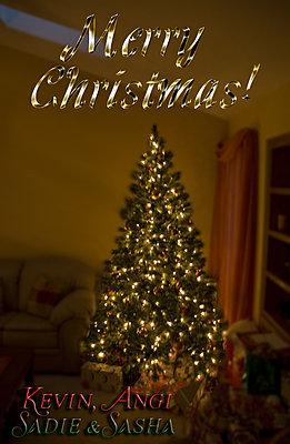 Season's Greetings Everyone!-christmas_tree2.jpg