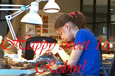 Happy sweet 16, Robin :)-robin-sweet-16.jpg