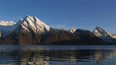Tales of Wonder and Woe: UWOL-Long-Form 2009-mallard-fjord.jpg
