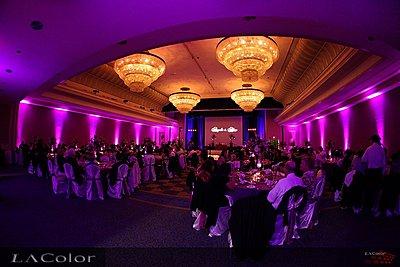 LED Uplights and GOBO for Wedding Reception-uplights2.jpg