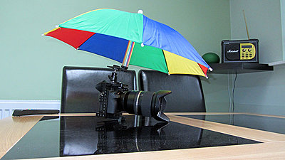 For when you are waiting in the rain for the bride's arrival-umbrella-1.jpg