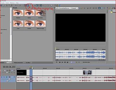 Inserting media-autoripple.jpg
