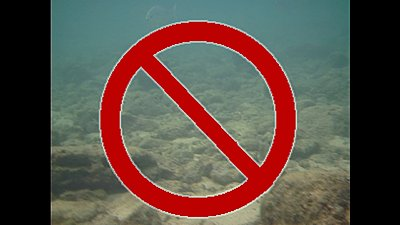 Universal 'No' Symbol-image3.jpg