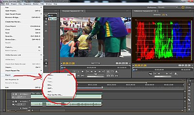 A Humble Suggestion for Sony in the FCPX Fiasco aftermath-export-options.jpg