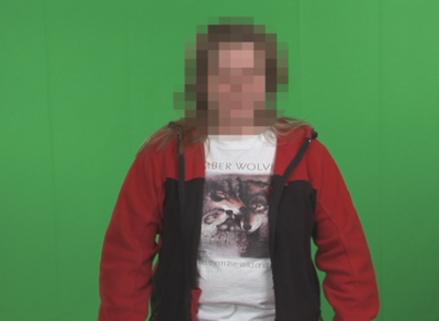 The DV Codec-dv_pixelation_shearing.png