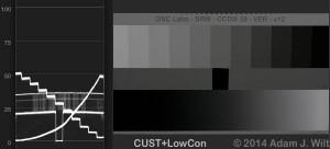 CCDM-CUST-LOWCON1