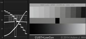 CCDM-CUST-LOWCON2
