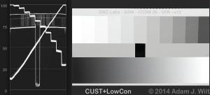 CCDM-CUST-LOWCON3