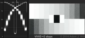 CDMh2Vivid