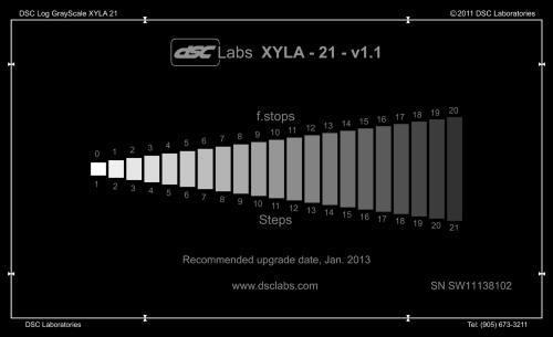 Xyla-21