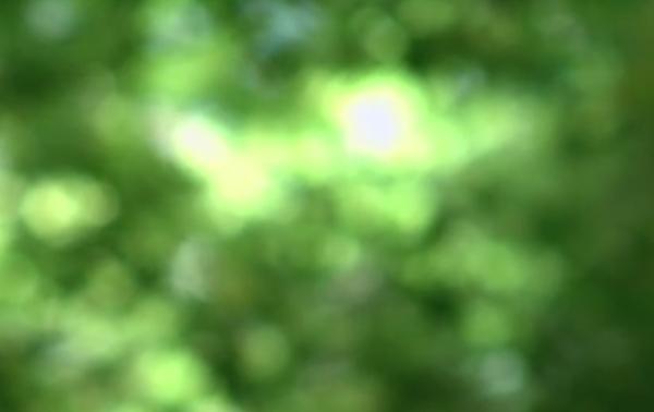 Screen Shot 2014-09-18 at 9.04.37 PM