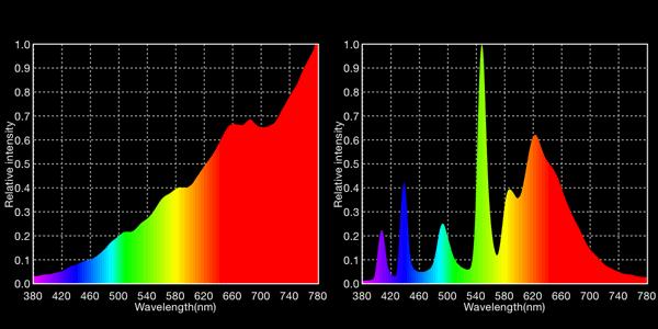 2720K tungsten lamp vs. 2959K Kino-Flo fluorescent lamp