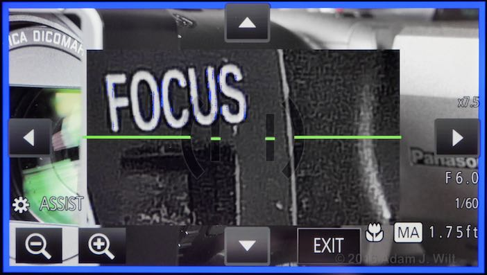 Focus Assist with image magnification and blue peaking